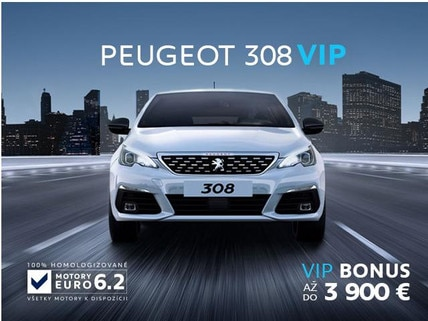 VIP 308_01_2019