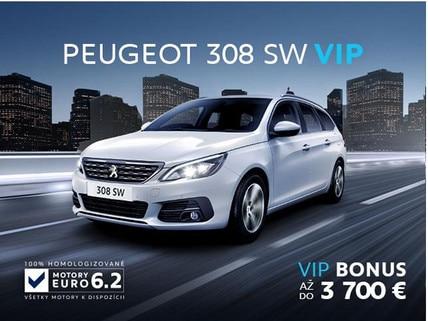 VIP 308 SW_01_2019