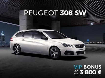 308 VIP SW update
